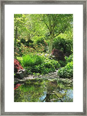 Finnerty Gardens Pond Framed Print