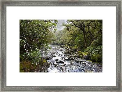 Fiordland National Park New Zealand Framed Print
