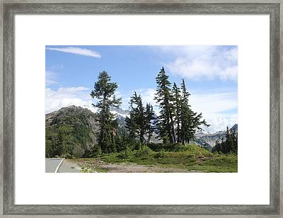 Framed Print featuring the photograph Fir Trees At Mount Baker by Tom Janca