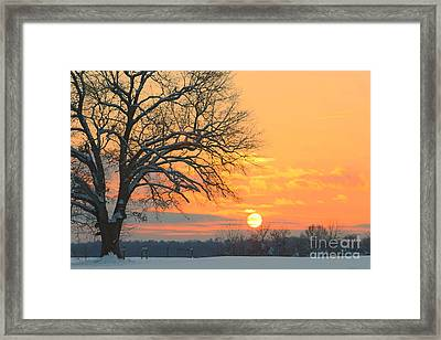 Fire And Ice Framed Print by Benanne Stiens