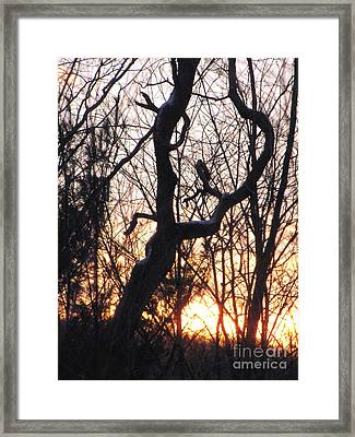 Framed Print featuring the photograph Fire And Ice by Melissa Stoudt
