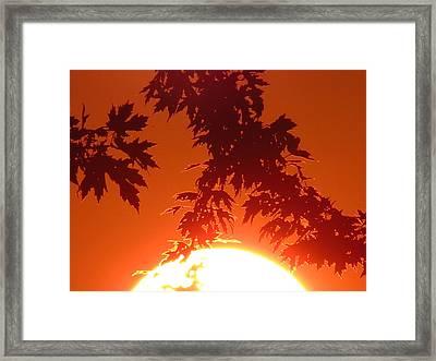 Fire Burning Sun Framed Print by Nikki McInnes
