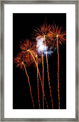 Fire Dandelion Bouquet Framed Print by Weston Westmoreland