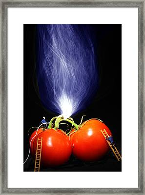 Fire Fighting On Tomatoes Little People On Food Framed Print by Paul Ge