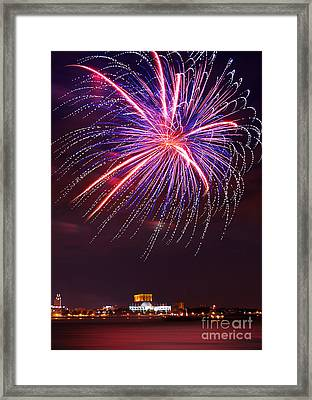 Fire Flower Framed Print by Rima Biswas