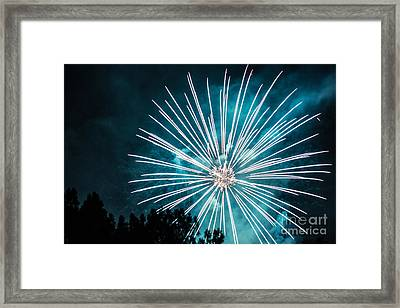 Framed Print featuring the photograph Fire Flower by Suzanne Luft