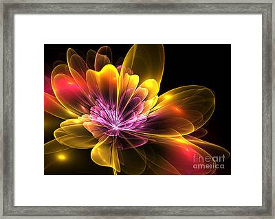 Fire Flower Framed Print by Svetlana Nikolova