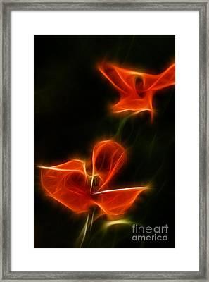 Fire Flowers Framed Print
