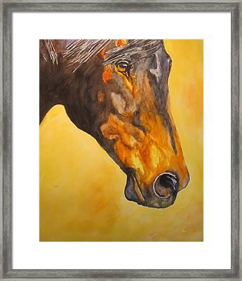 Fire Horse Framed Print