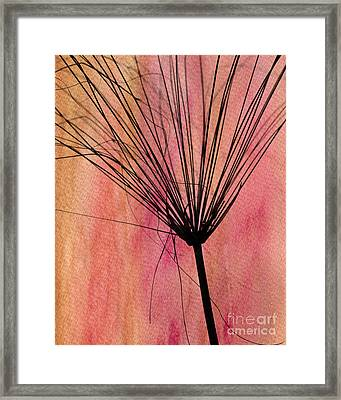 Fire In The Sky Framed Print by Sabrina L Ryan