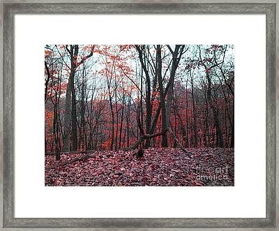 Fire In The Woodland Framed Print