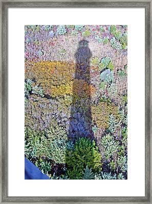 Fire Island Shadow Framed Print