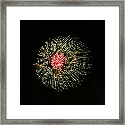 Fire Jellyfish Framed Print