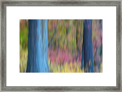 Fire Framed Print by Jonathan Nguyen