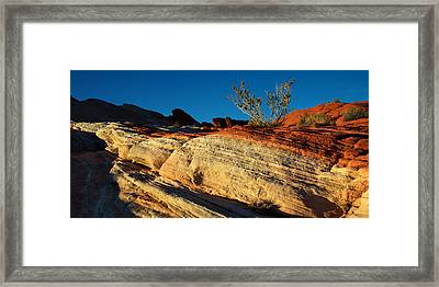 Fire Lines Framed Print by Chad Dutson