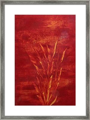 Fire Framed Print by Nico Bielow