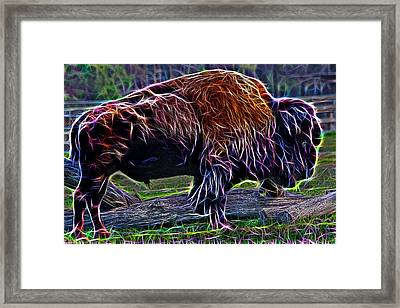Fire Of A Bison  Framed Print