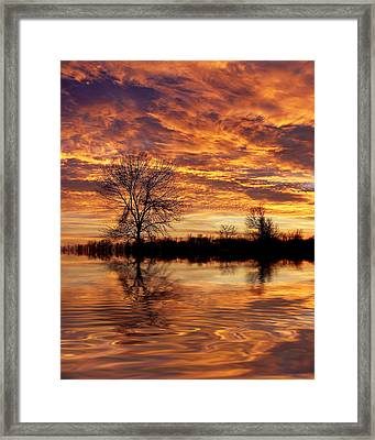 Fire Painters In The Sky Framed Print by Bill Pevlor