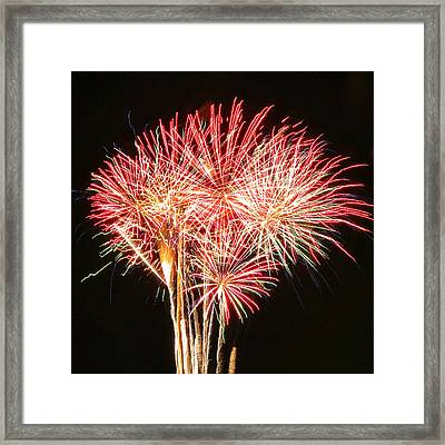 Fire Palm Tree Framed Print
