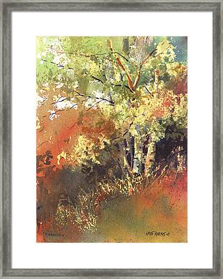 Fire Season Framed Print by Kris Parins