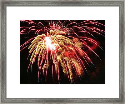 Fire Tarantula Framed Print
