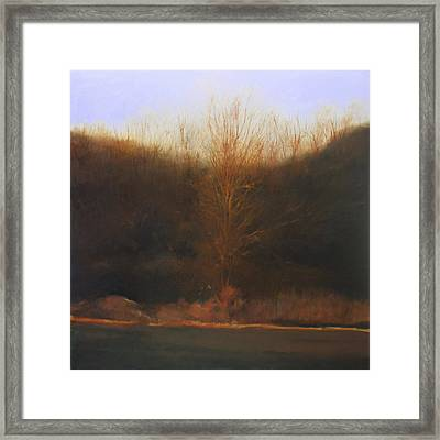 Framed Print featuring the painting Fire Tree by Cap Pannell
