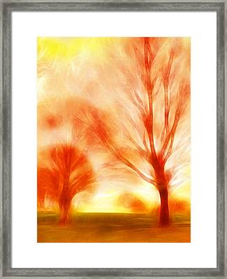 Fire Trees Framed Print by Sharon Lisa Clarke