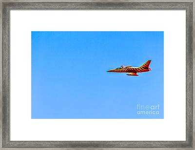 Firecat Fly By Framed Print by Robert Bales
