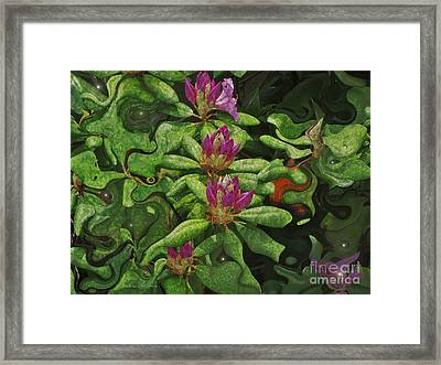 Fireflies And Flowers Framed Print