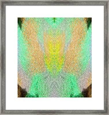 Firefly Framed Print by Christopher Gaston
