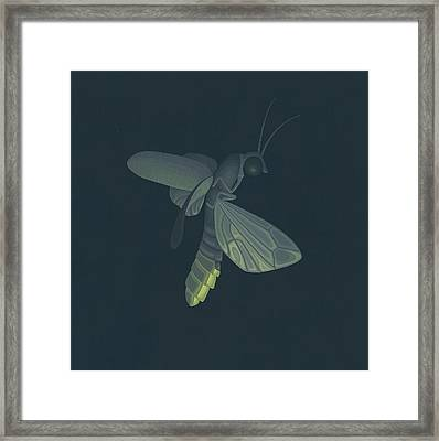 Firefly Framed Print by Nathan Marcy
