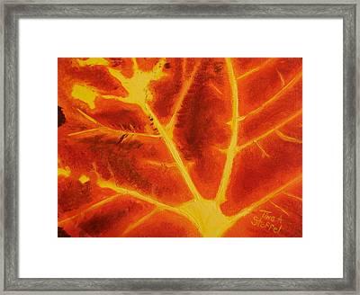 Fireleaf Framed Print by Tina Stoffel