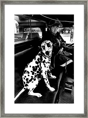 Fireman Dalmatian To The Rescue Framed Print