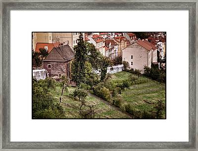 Firenze In Prague Framed Print by Joan Carroll