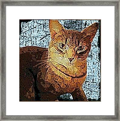 Fireside Friend Framed Print by Sherry Gombert