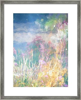 Fireweed Number 9  Framed Print