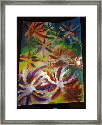 Firework Flower Framed Print by Eric Birmingham