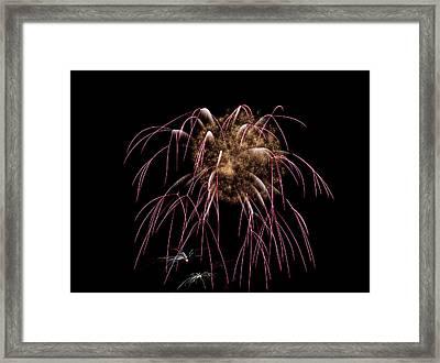 Fireworks 01  Framed Print by David Kittrell