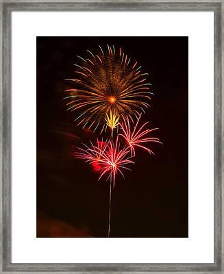 Fireworks 4 Framed Print by Chris Flees