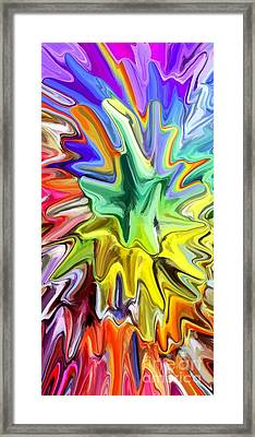 Fireworks Framed Print by Chris Butler