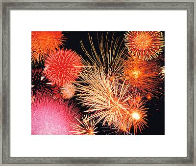 Fireworks Display Framed Print by Panoramic Images