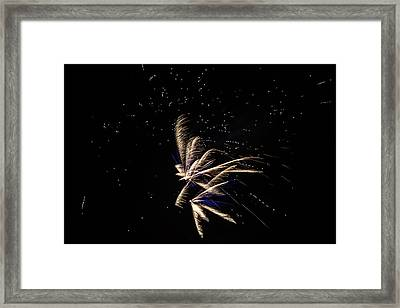 Fireworks - Dragonflies In The Stars Framed Print