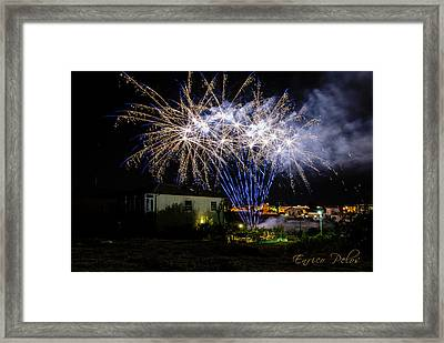 Fireworks In The Garden Framed Print