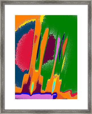 Fireworks Framed Print by Tom Druin