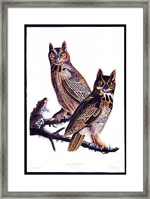 First American West  The Ohio River Valley 1750 1820  Great Horned Owl Framed Print by MotionAge Designs