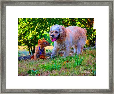 First Anniversary Image Angel And Chika Framed Print by Tina M Wenger
