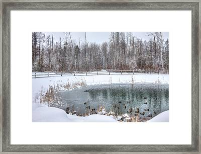 First Day Of Spring. Framed Print by Gary Smith