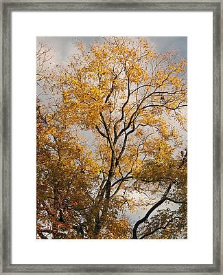 First Day Of Winter 2 Framed Print