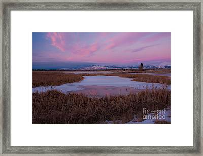 Framed Print featuring the photograph First Evening 2013 by Katie LaSalle-Lowery