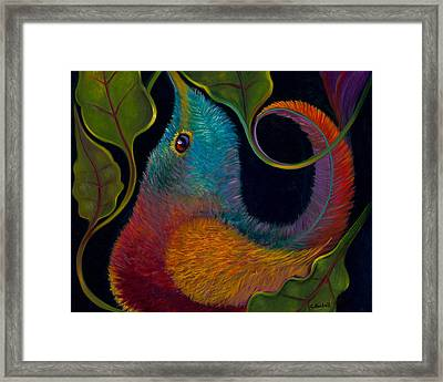 First Flight 3 Framed Print by Claudia Goodell